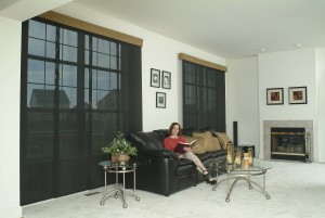Dave's House SOE Shades of Elegance roller shades