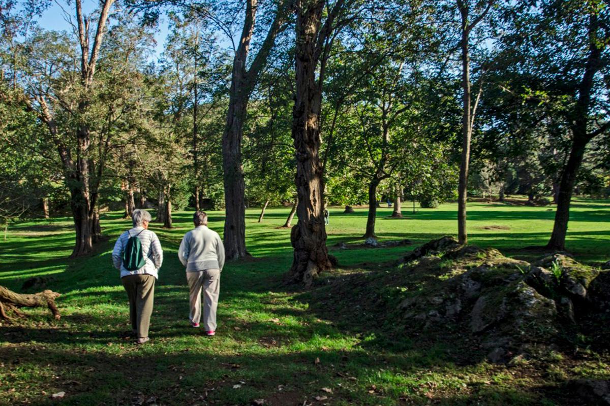 Imagen personas paseando por el parque