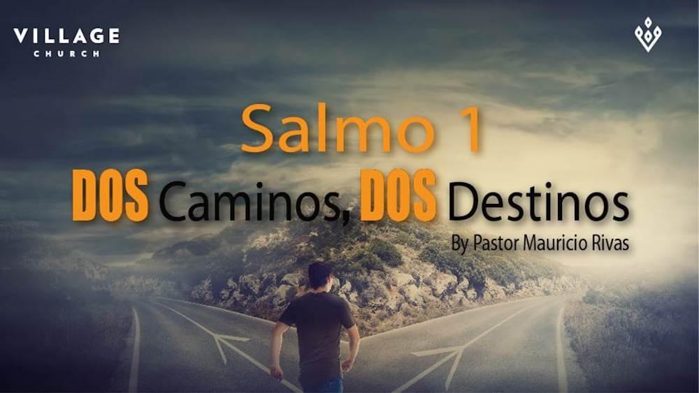 Dos Caminos-Dos Destinos. Salmo 1 Image