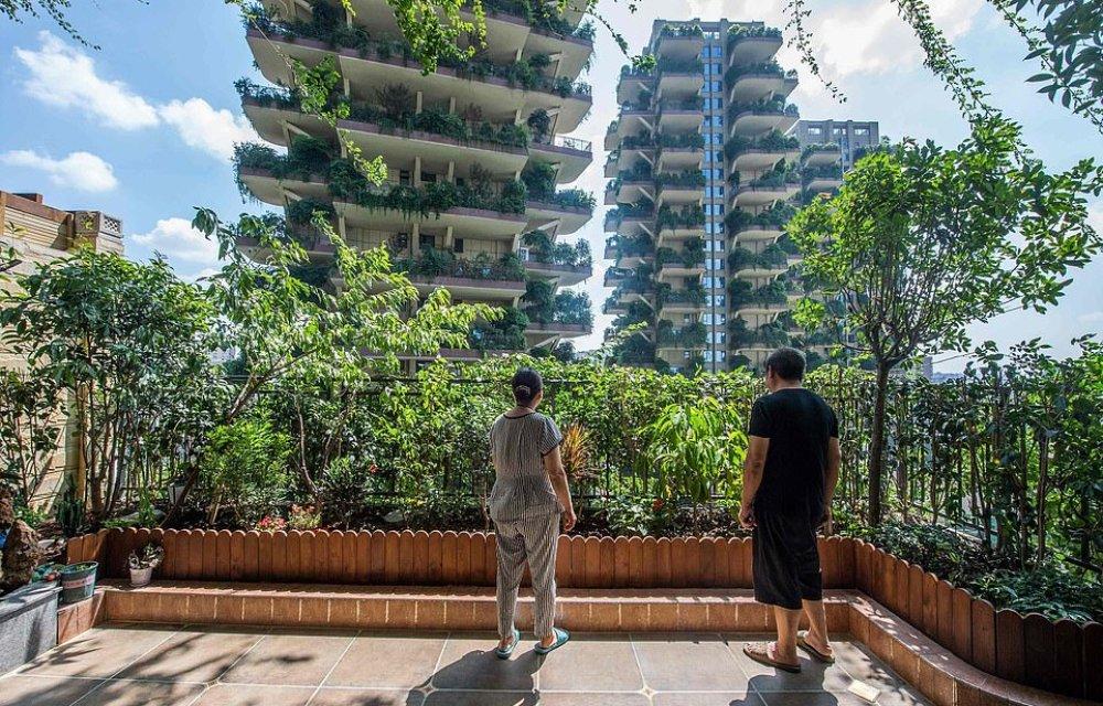 「垂直森林」為城市帶來綠意,讓居民與大自然共融,但同時也帶來意想不到的狀況⋯⋯