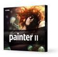 Painter 11