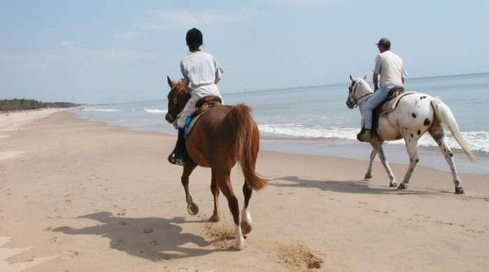 Equitation Ile de Ré