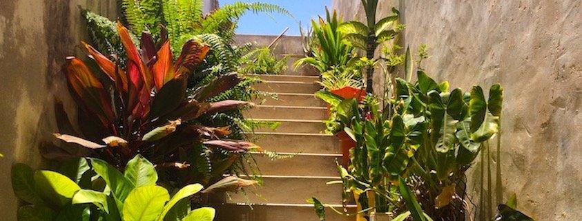 Staircase in Vila do Maio, Cape Verde