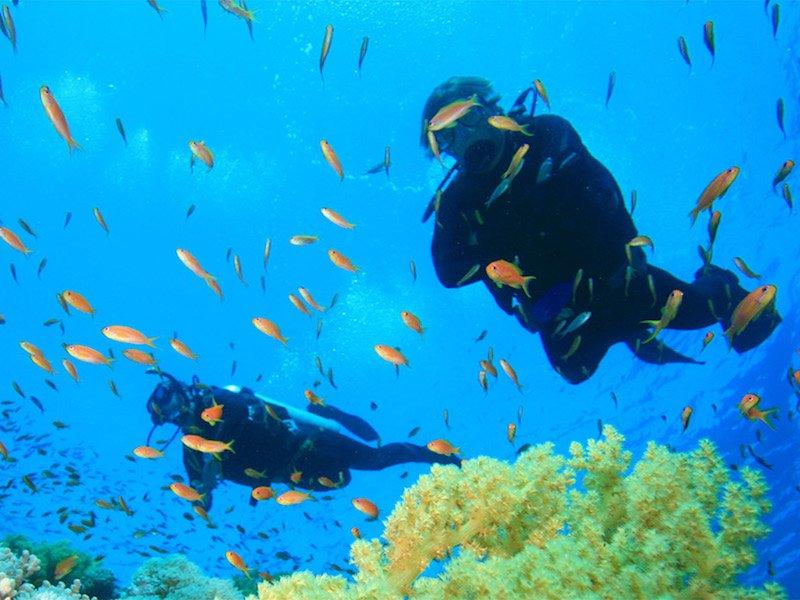 scuba diving maio cape verde