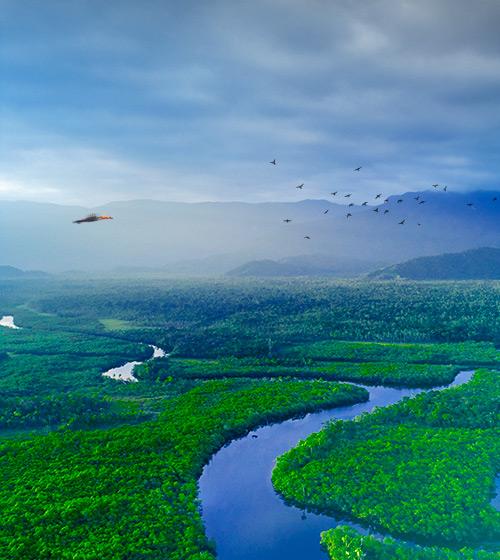 VillaMix Manaus