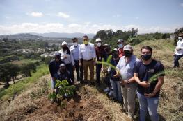 municipalidad-villanueva-guatemala-jornadas-reforestacion-3