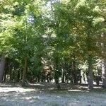 Parc du château d'Aramont