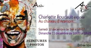 Exposition de peintures et photos au château d'Aramont par Charlotte Foucault