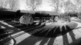 14012018-jeux d'ombres