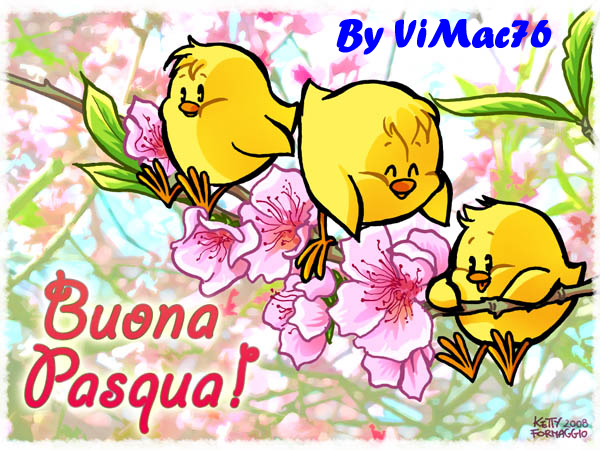pasqua-VIMAC