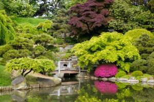 staycation ideas brooklyn botanical gardens
