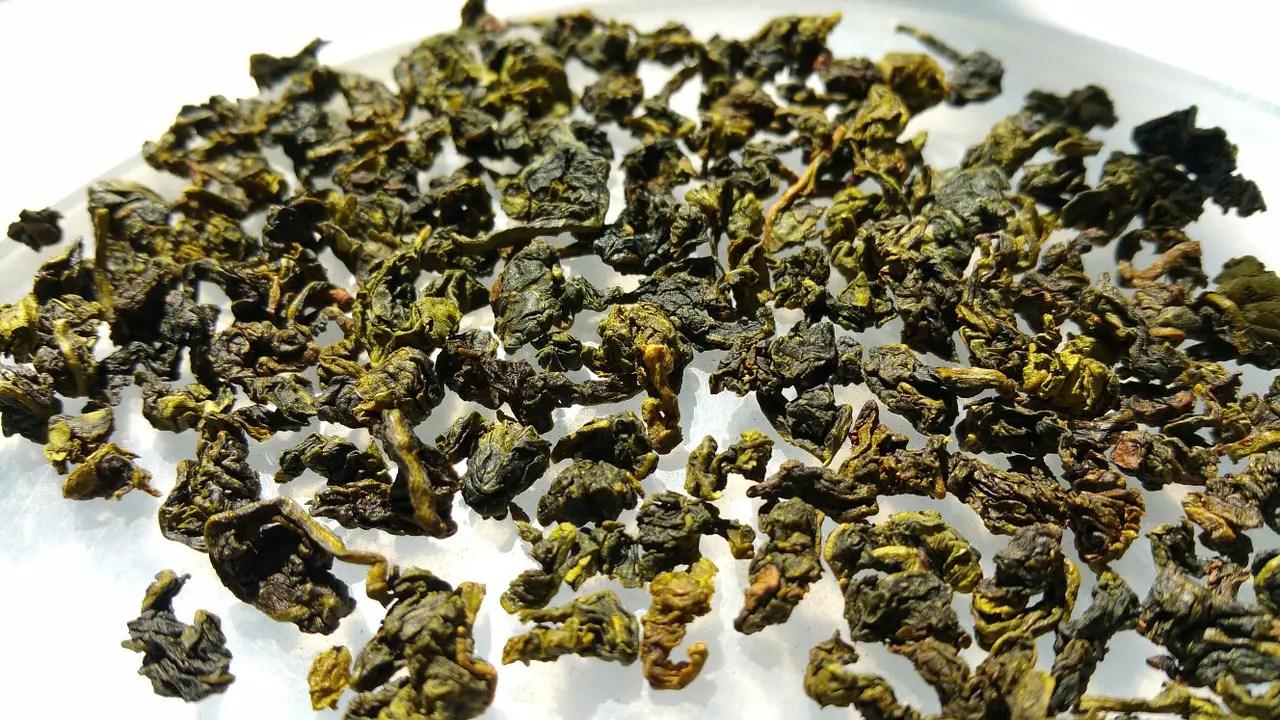 oolong tea, weight loss tea