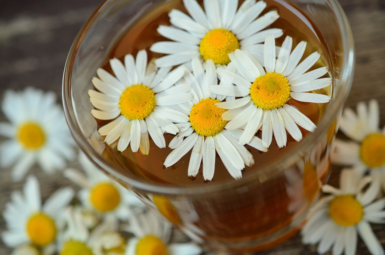 chamomile tea, best teas for your skin, best tea