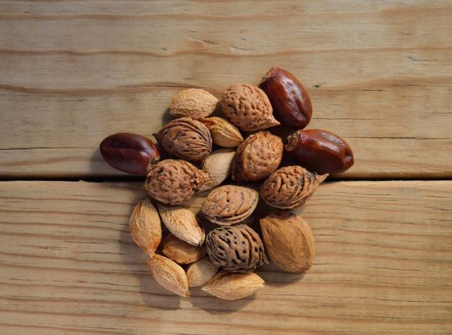Eating Nuts Could Boost Male Fertility