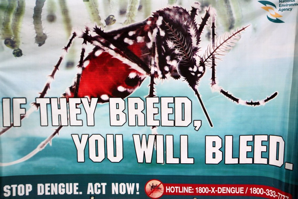 Dengue Outbreak in the Philippines is Now a National Epidemic