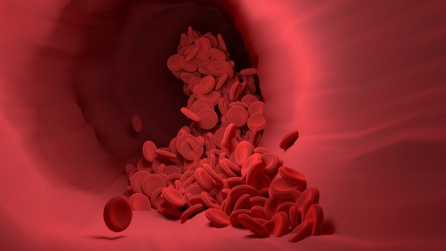 Can HIV Spread through Blood