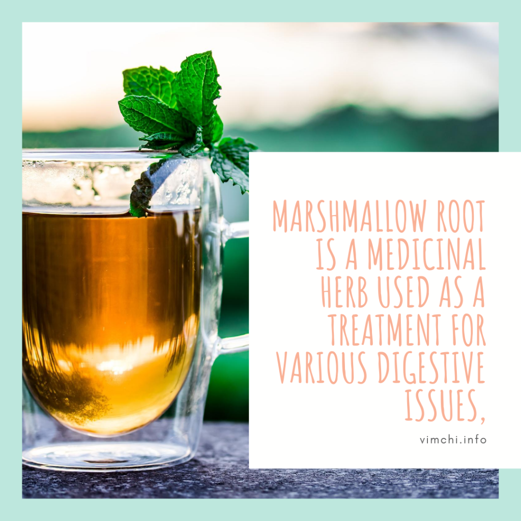 Which Herbal Tea is Best for Acid Reflux? marshmallow tea