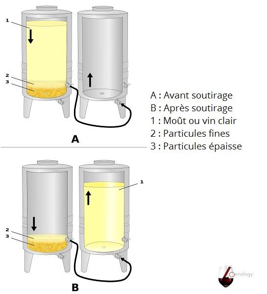Soutirage de vin non raffiné et non filtré - Diagramme de Vin & Oenologie