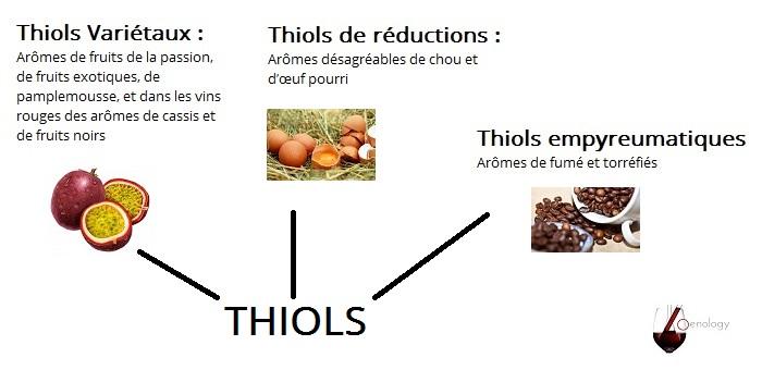 Les thiols sont des composés de souffre et dégagent des aromes