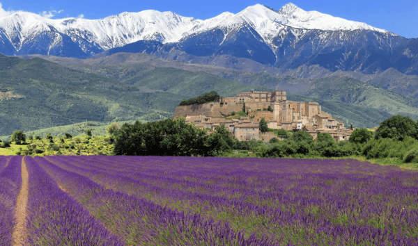 Les routes des montagnes rocheuses, le vin et la lavande sont les marques exceptionnelles de la Provence.