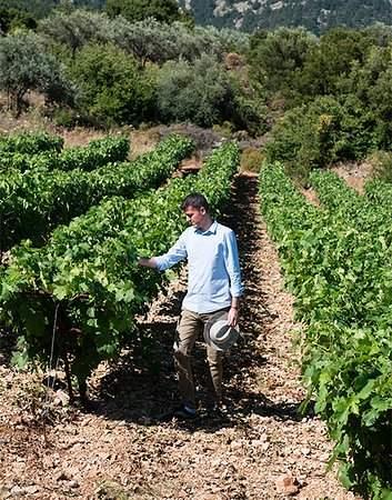 Alexandris Winery Rhodes