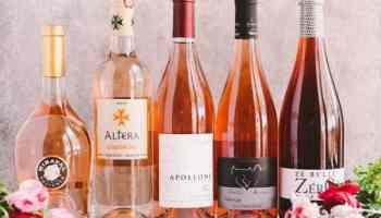 Comment boire le vin rosé