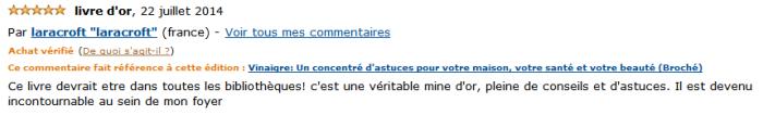 laracrift-vinaigre-commentaire