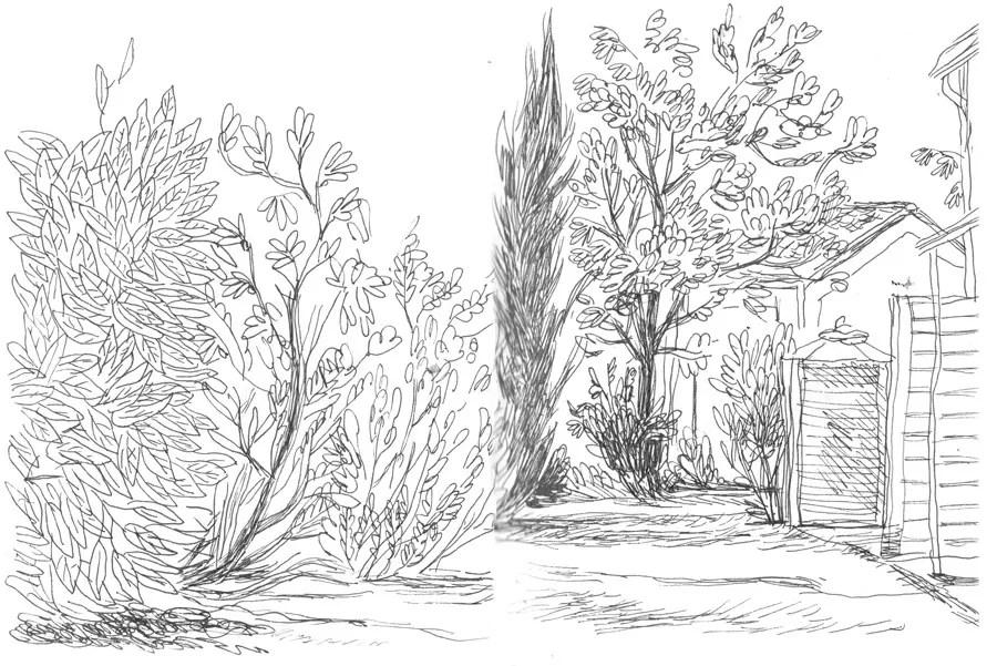 Les jardins du lieu de séjour à Carpentras.