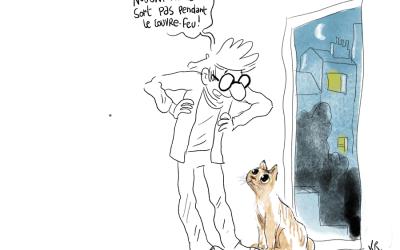 Mon chat et le couvre-feucouvre,feu,covid,confinement