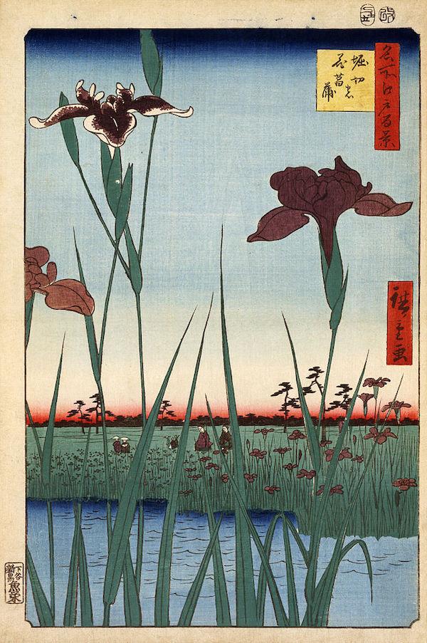 "Hiroshige,""Iris Horikiri dans un jardin"" (1857)"