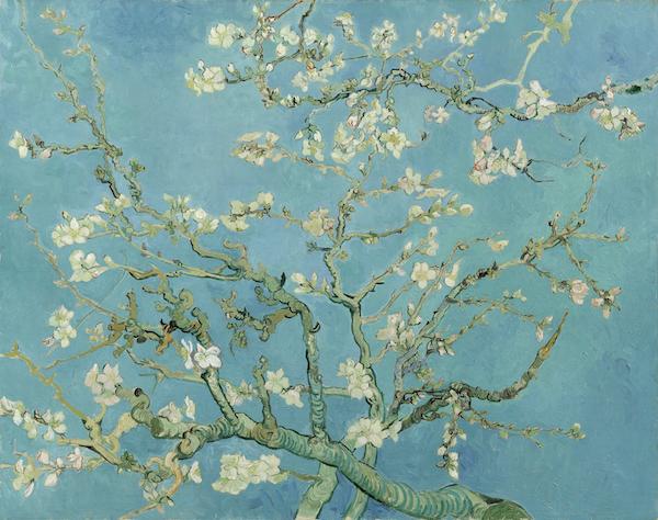 """Vincent van Gogh, """"Amandier en fleurs"""" (1890)"""