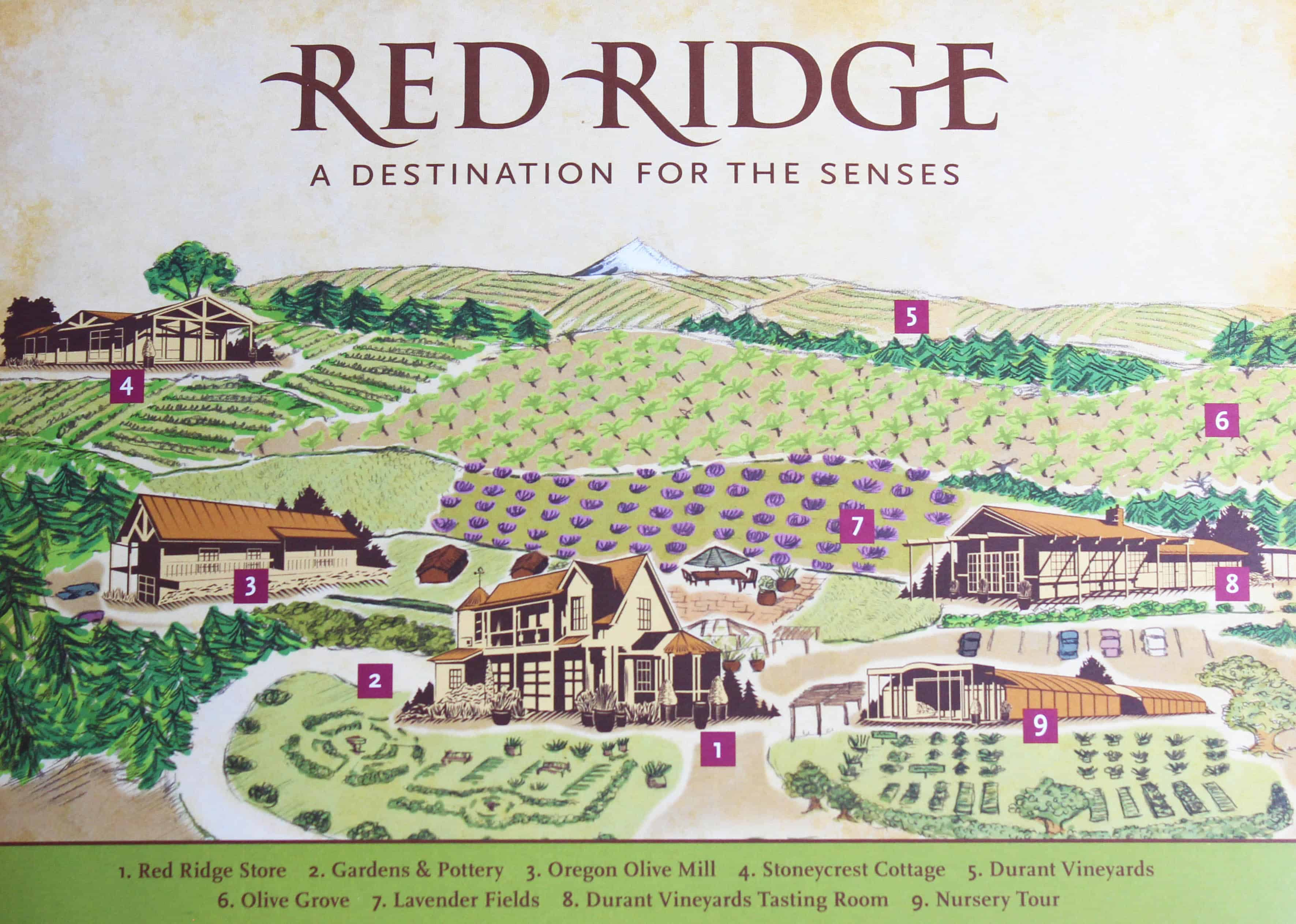 Image result for red ridge winery