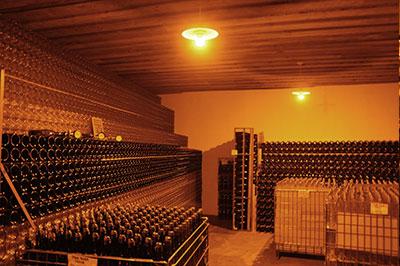 Champagne Haderburg