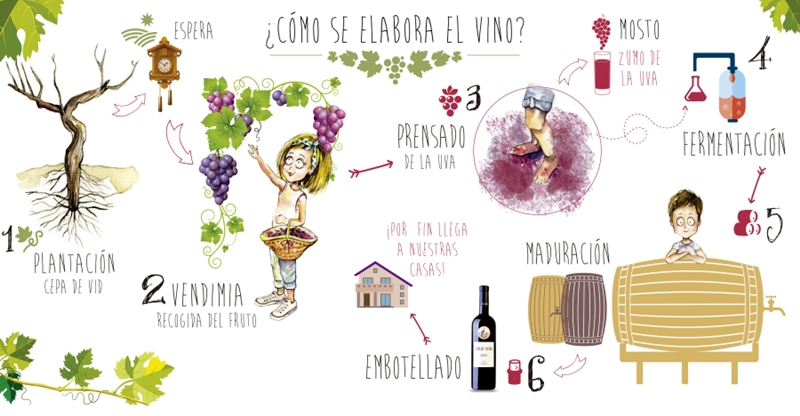 Wineies Emilio Moro invites parents and children to experience the grape harvest with a didactic workshop