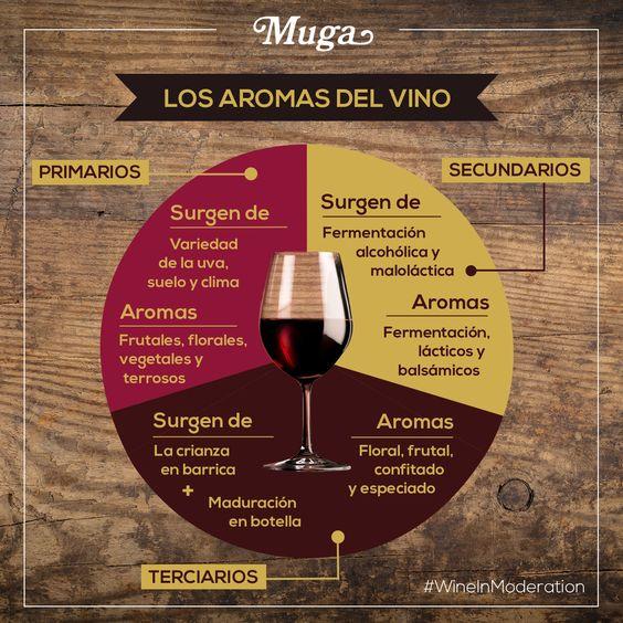 pagina11, 20 geniales infografías para aprender a catar vinos
