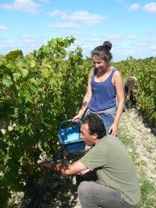 Vinibee-vin bio et naturel-Domaine de Bablut-Christophe Daviau1