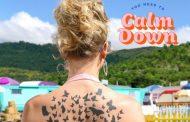'You Need to Calm Down' da a Taylor Swift su sexto #2 en los Estados Unidos