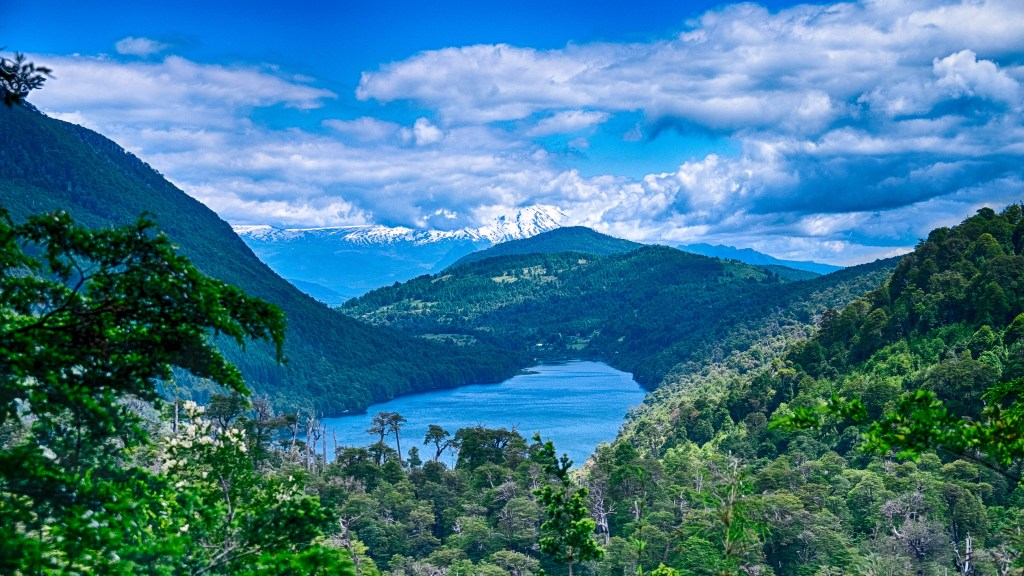 Huerquehue, Chile, Travel Photography, Vin Images