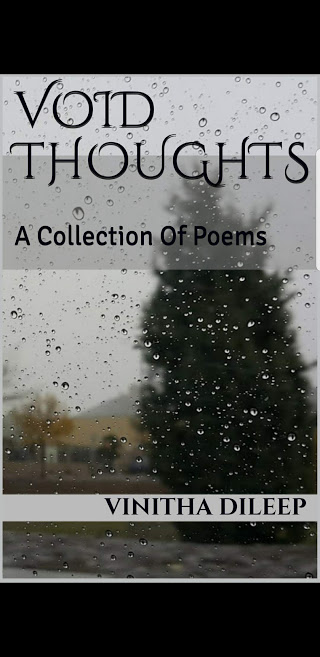 Void Thoughts A Collection Of Poems