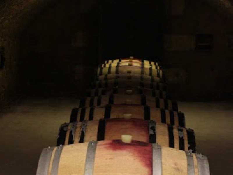 Guided Classical Tours with possible visits to a cellar
