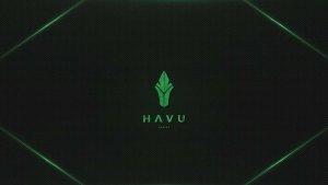 Flashpoint: HAVU vs Cloud9