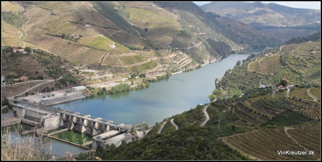 Douro port wine