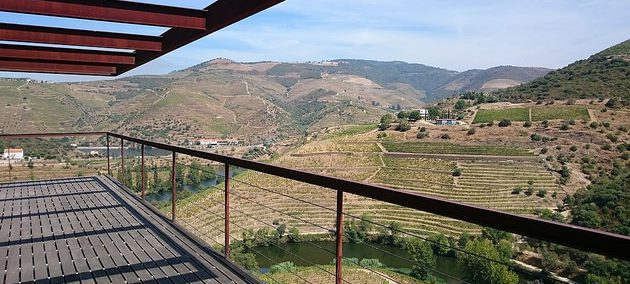 View of Douro from Quinta do Napoles