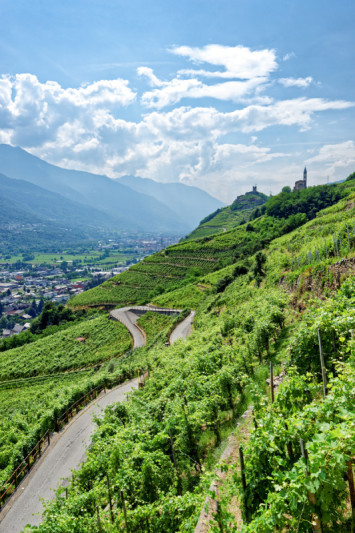 Vignes et Castel Grumello