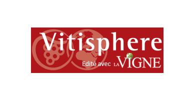 logo vitisphere
