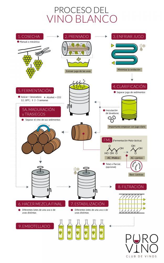 Elaboracion de vino tinto pdf995