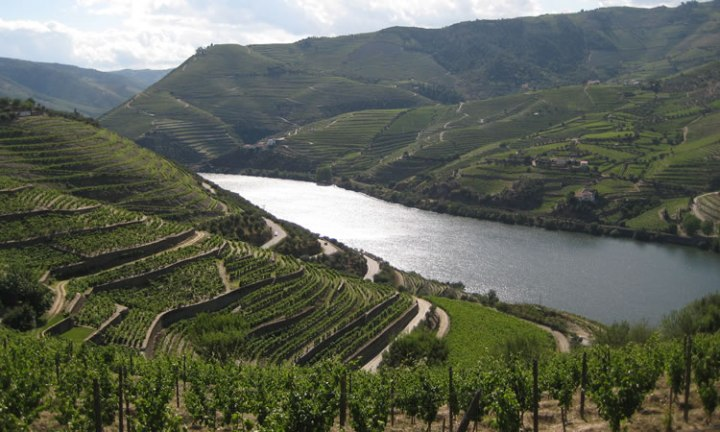 unesco-douro-portugal