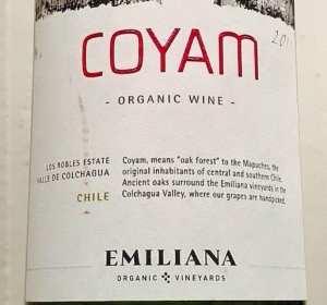 Emiliana Coyam 2011 Wine Organic