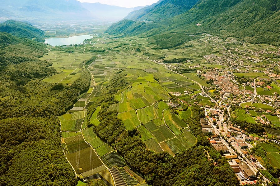 Lago di Caldaro Kaltern Kellerei a Terre d'Italia