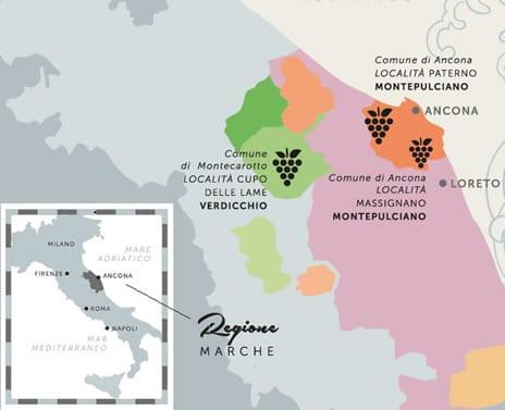 Mappa zona di produzione Verdicchio Castelli di jesi